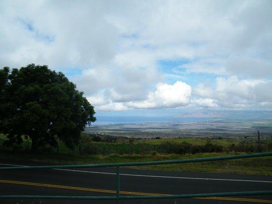 Bike Maui : Paisajes del camino