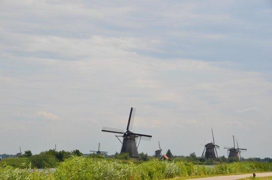 Mühlenanlagen in Kinderdijk-Elshout: Mill