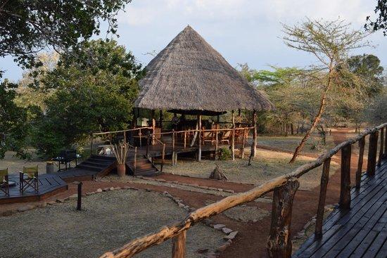 Selous Impala Camp: Bar area