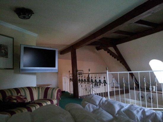 Schlosshotel Iglhauser: Eigen TV bij bed