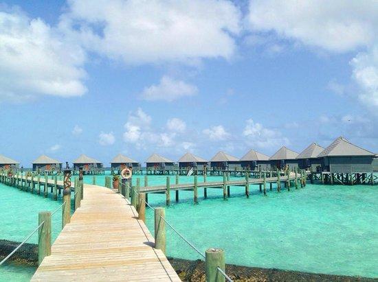 Komandoo Maldives Island Resort : Water Villas