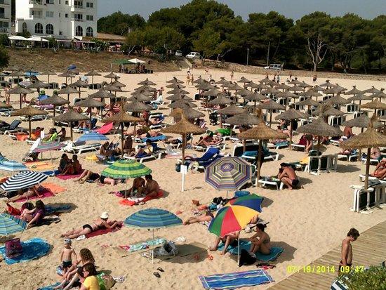 BelleVue Belsana: Local beach 5 mins walk