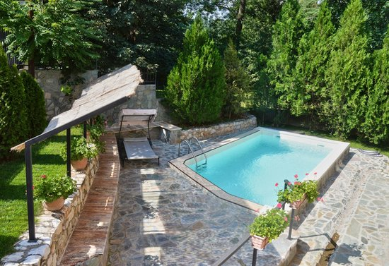 Villa Vodno: swimming pool