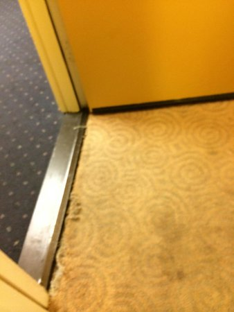 Hotel Solares: Ripped, frayed, stained carpet.