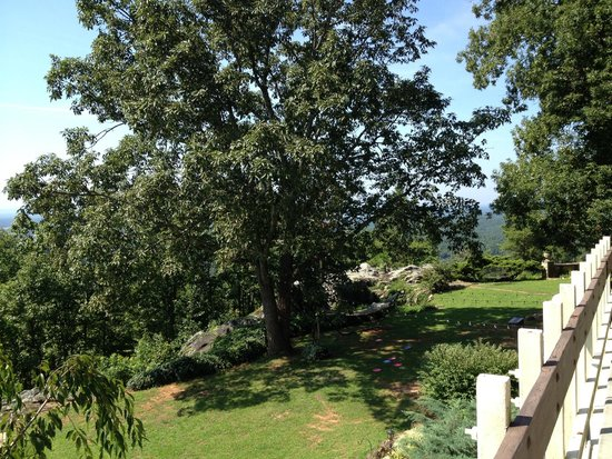 The Secret Bed and Breakfast Lodge : grounds