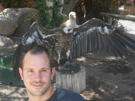 Park Las Aquilas Jungle Park : vautour jungle park