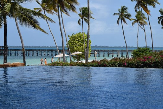 The Residence Zanzibar: View from our sunlounger!