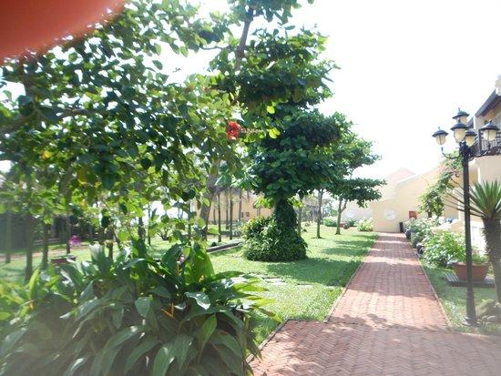 Victoria Hoi An Beach Resort & Spa : hotel grounds