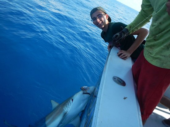 Key West Fishing Connection - Private Charters : First black tip caughtPMG