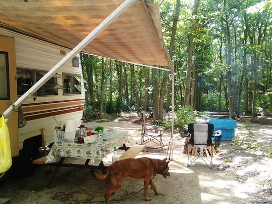 Cedar Creek Campground : Our Site #79