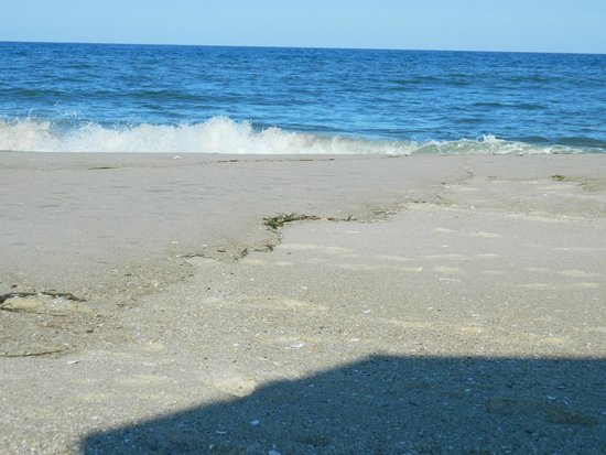 Assateague State Park: Uncrowded beach!