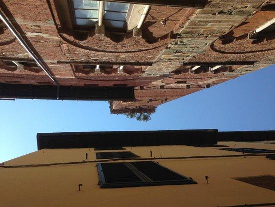 Lucca in Villa Elisa: Torre