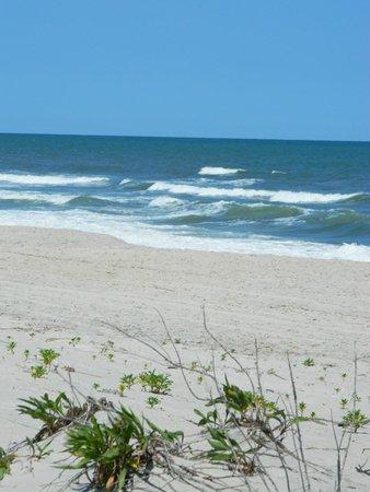 Assateague State Park: Beautiful, clean beach!