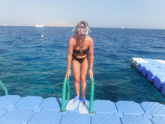 Baron Resort Sharm El Sheikh : Snorkeling off the beach - magical