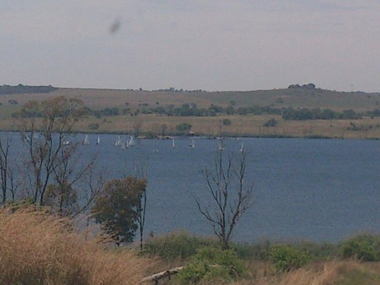 Rietvlei Nature Reserve : Boats on the dam