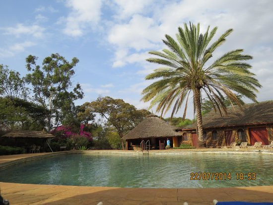 Amboseli Sopa Lodge: the swimming pool