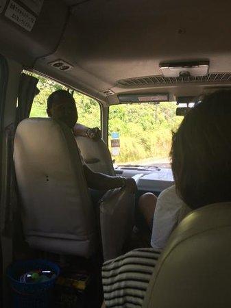 Peat Taylor Tours: Van ride - RePeat shown