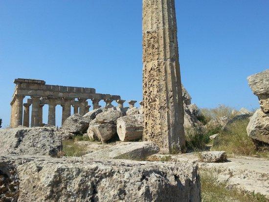 Selinunte : Selinus ruins