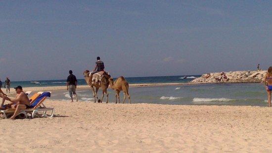 Marhaba Salem : Beautiful Beach