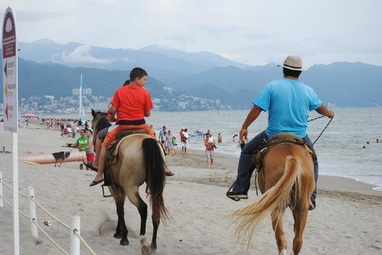 Crown Paradise Club Puerto Vallarta: Horse ride on the beach - Not free