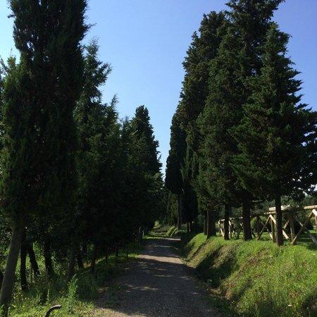 Borgo San Giusto: parco