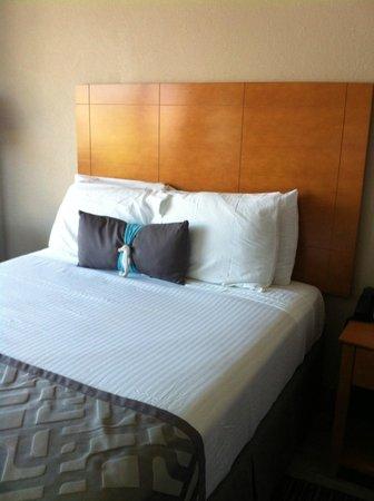 Beachside Motel: Comfy beds