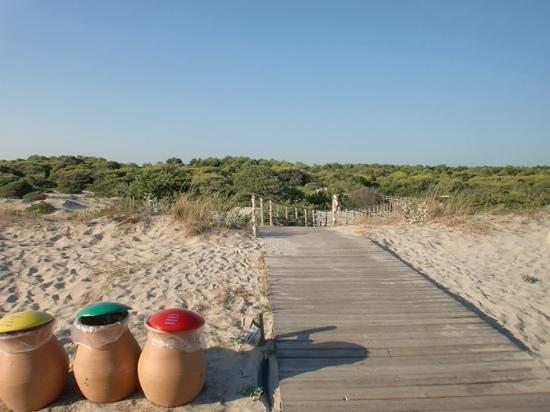 Vivosa Apulia Resort: passerella per raggiungere il mare
