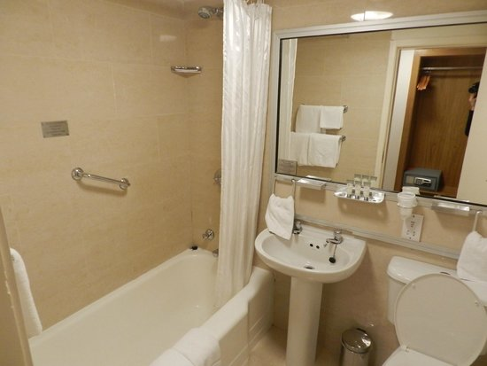 Blooms Hotel: Banheiro