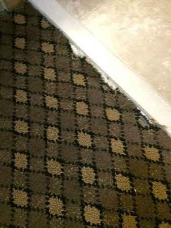 Holiday Inn Express Harrisburg East: More holes in the carpet