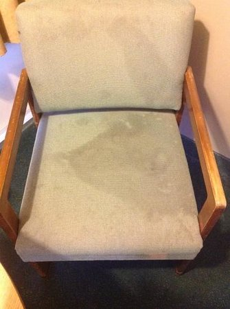 Norfolk Country Inn & Suites : The inviting chair in our room. Mmmmmm. . . crusty.