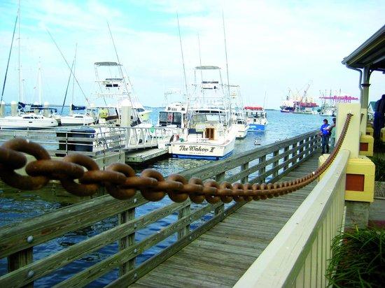 Hampton Inn Amelia Island at Fernandina Beach: more harbour