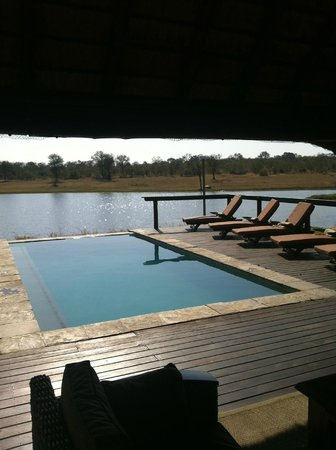 Arathusa Safari Lodge : piscina nella savana