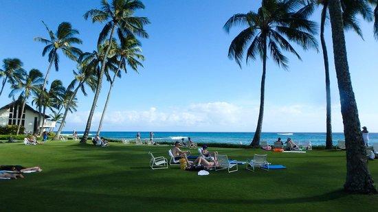 Kiahuna Plantation Resort: Palmenstrand
