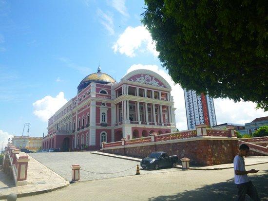 Teatro Amazonas Museum: Vista lateral