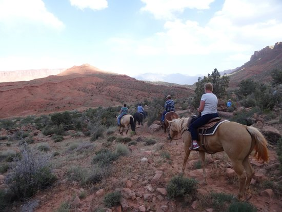 Red Cliffs Lodge : Horseback riding at the lodge