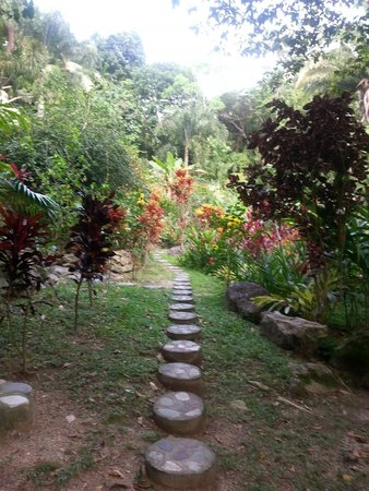 Villas Pico Bonito: Grounds
