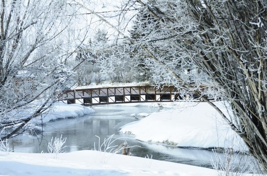 Rustic Inn Creekside Resort and Spa at Jackson Hole : The Bridge on the property,unseen otters playing nearby
