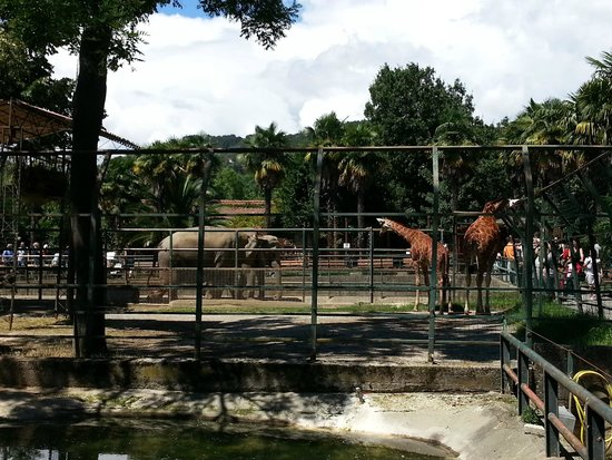Giardino Zoologico di Pistoia : ZOO