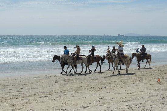 La Paloma: Rosarito Beach on Horseback