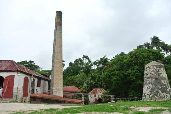 St. Nicholas Abbey: The rum factory