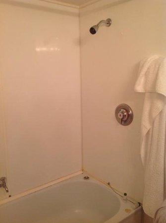 Rydges Lakeland Resort Hotel Queenstown : bathroom needs upgrade