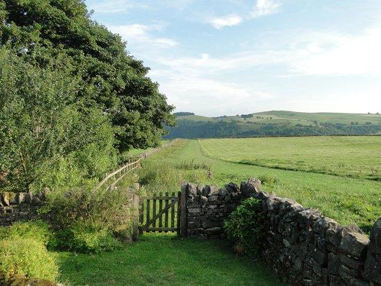 Beechenhill Farm: View from garden