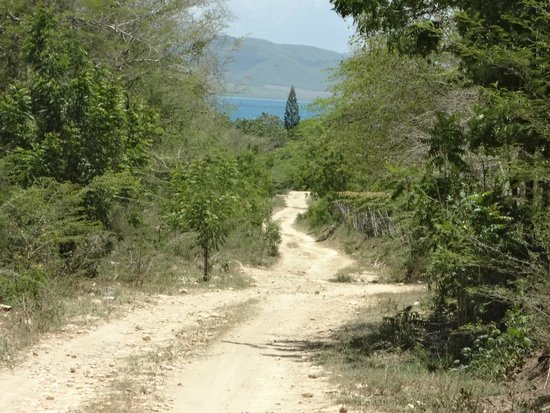 Villa Rosa : Da f-ing google maps recommended route - AVOID!