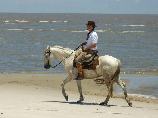 Tavares, RS: Cavalgada entre no Parque da Lagoa do Peixe