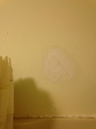 Mt. Olympus Resort: Patched hole in our shower