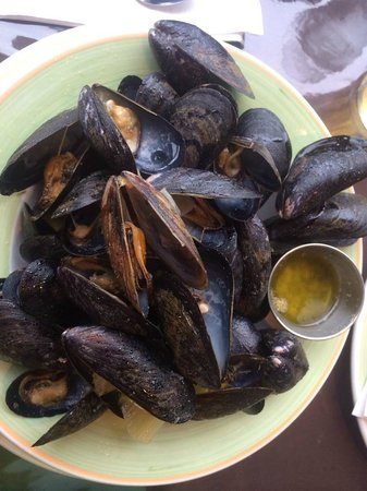 Harbour Restaurant : My Appetizer of mussels