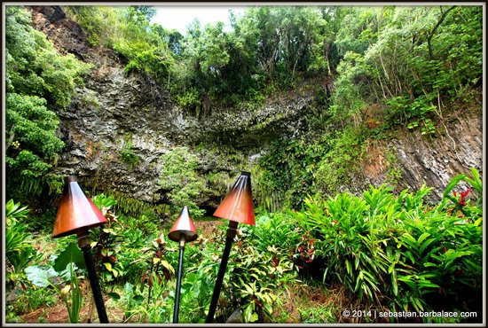 Fern Grotto : The Cave from Far Away