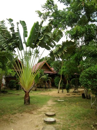 Haadsalad Resort : View of the garden & bungalows