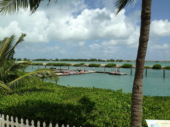 Hawks Cay Resort : view