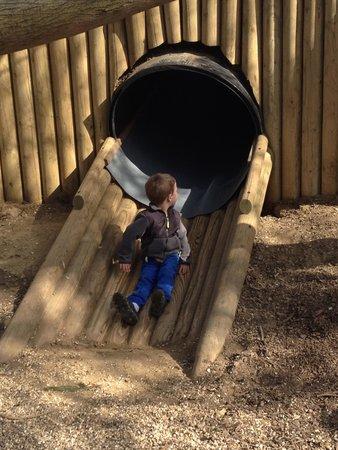 Hollow Trees Farm Shop: Fox Slide